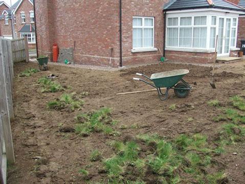 Gardener Belfast - Ballyrobert Project 1